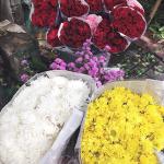 #02 Membeli bunga/ menanam bibit