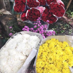 pasar bunga Tebet, Jakarta