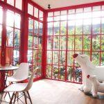 POCCI : kafe bertema anjing di dominasi warna merah