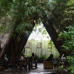 Makan tradisional ala Sunda di Kebun Awi Kaffee